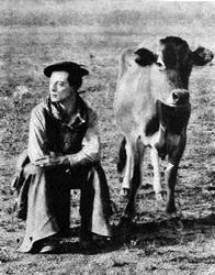 Buster Keaton y la vaca
